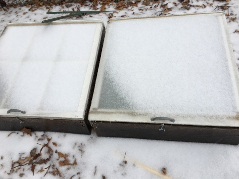 Cold frames blanketed in snow and ice