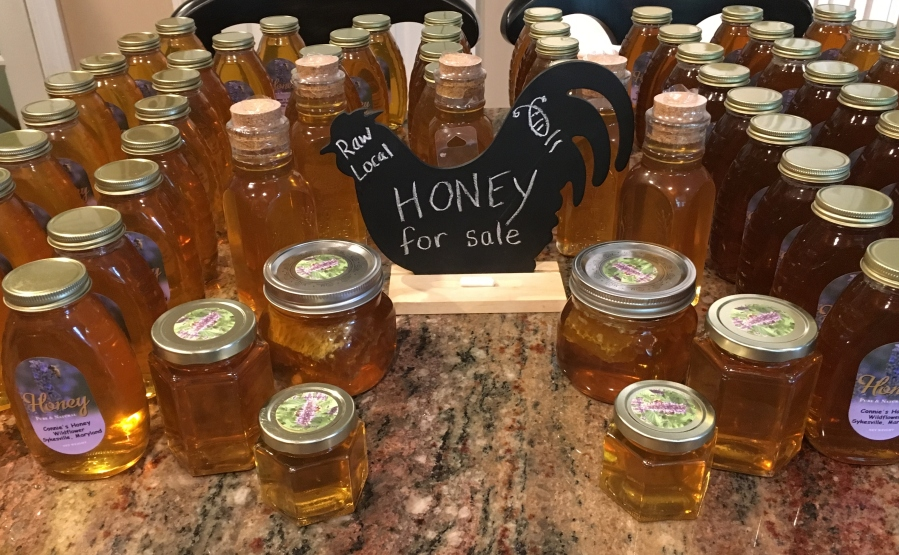 Honey Harvest 2017